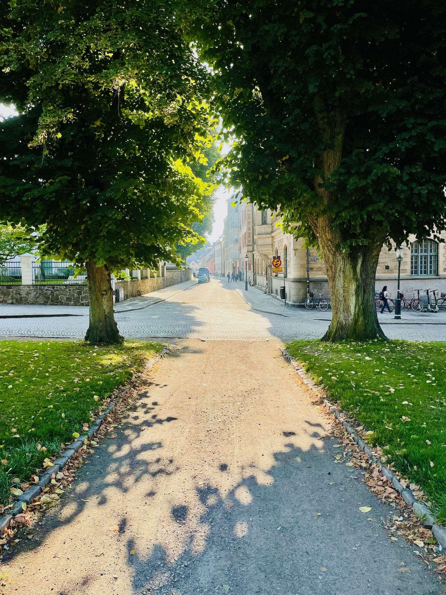 Sommarväder och sol i Lund.